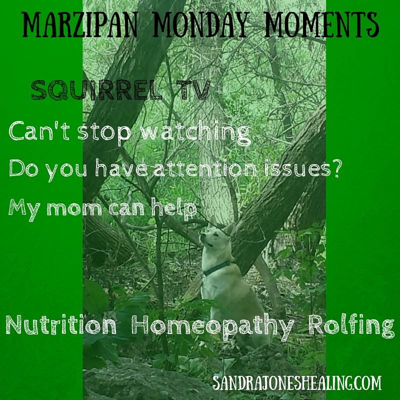MARZIPAN MONDAY MOMENTS-1